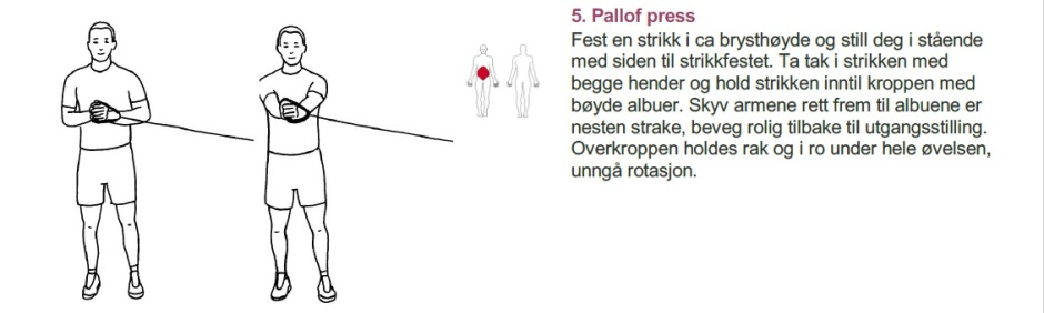 Pallof press (002)